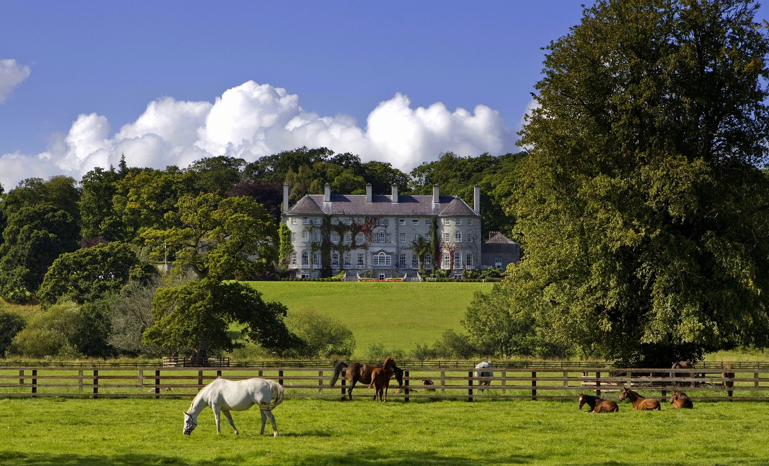 Photo of the Week – Mount Juliet House, Co. Kilkenny, Ireland
