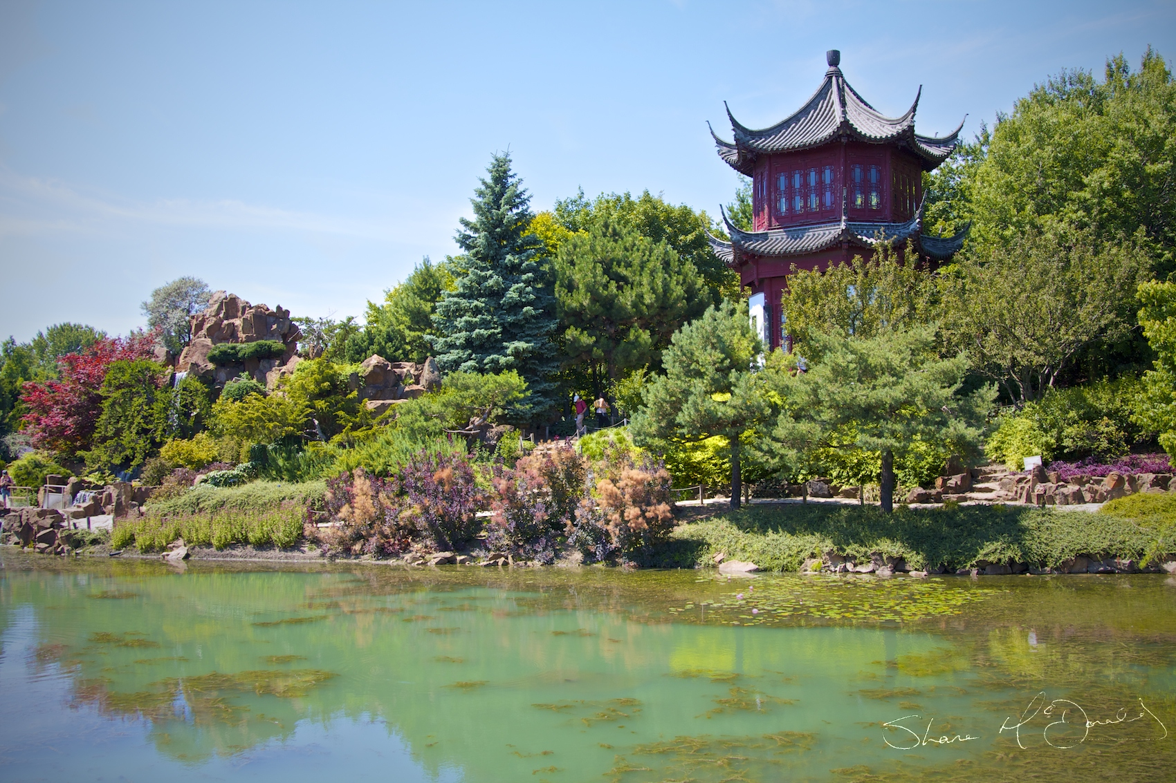 Chinese Gardens Montreal Botanical Gardens