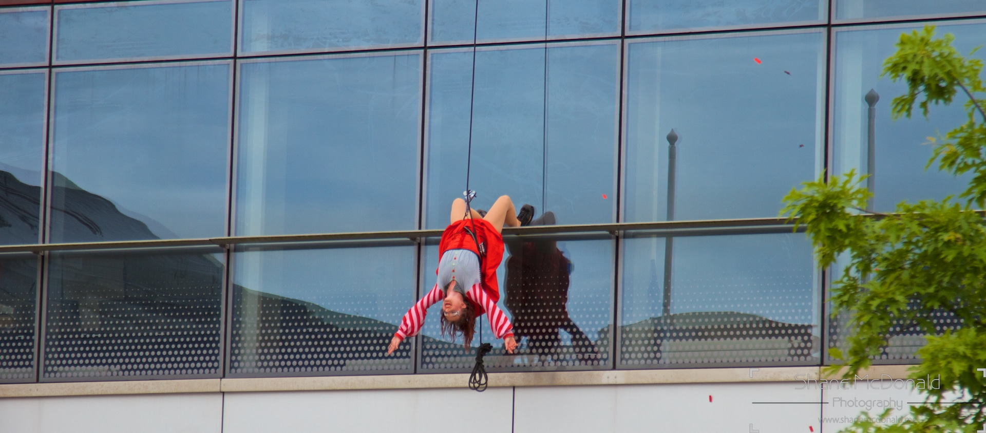 Urban Fly, walking on the front of the Waterford Crystal Building