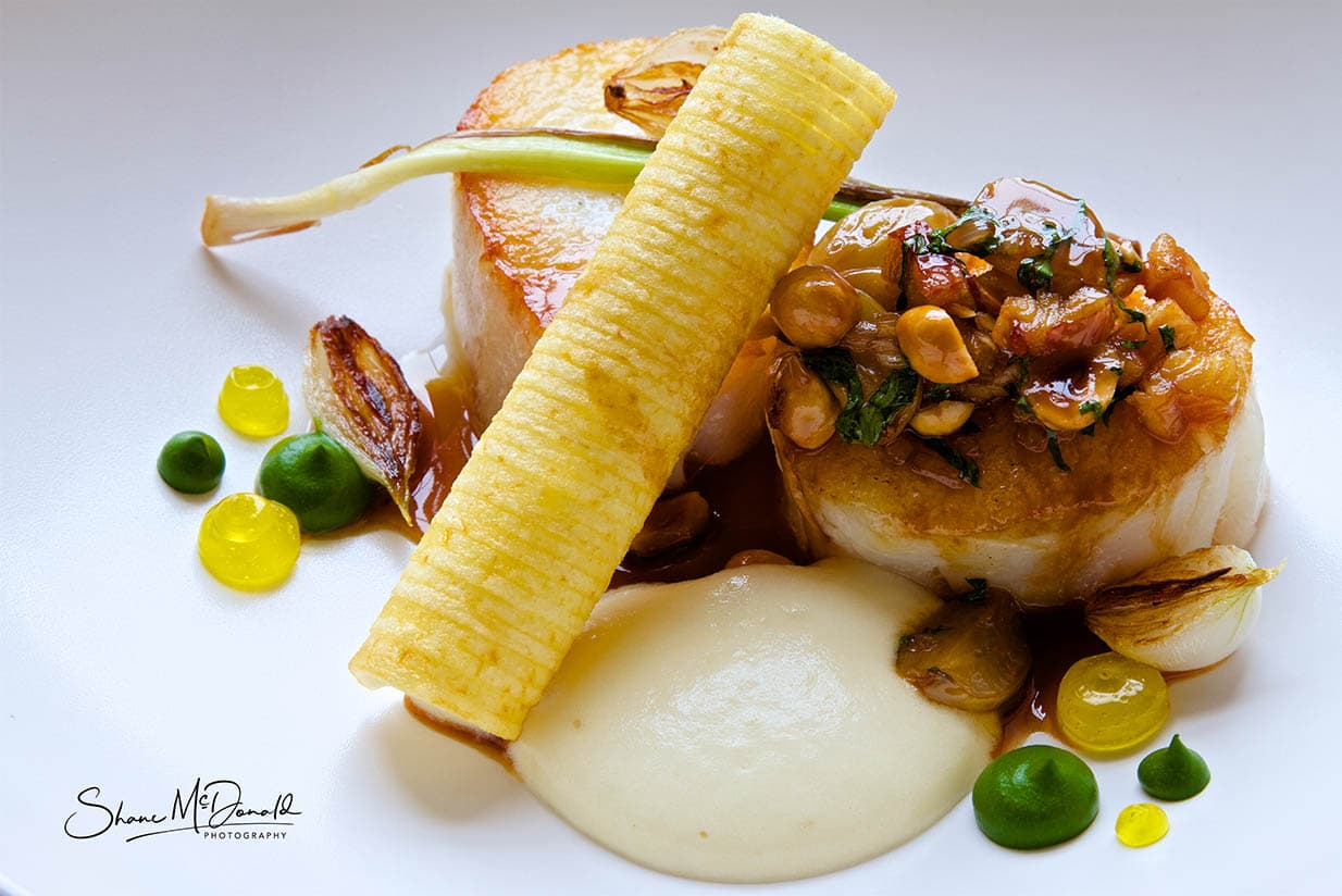 Cod and piped potato - Food Photography