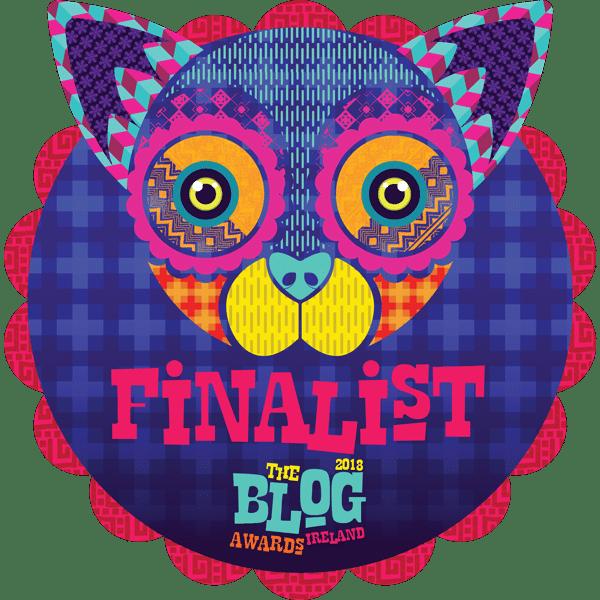 Blog Awards Ireland - Finalist : Shane McDonald Photography