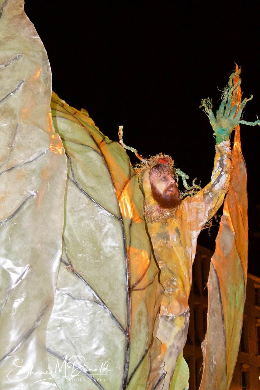 Leaf Nest Creature - Spraoi Parade 2018