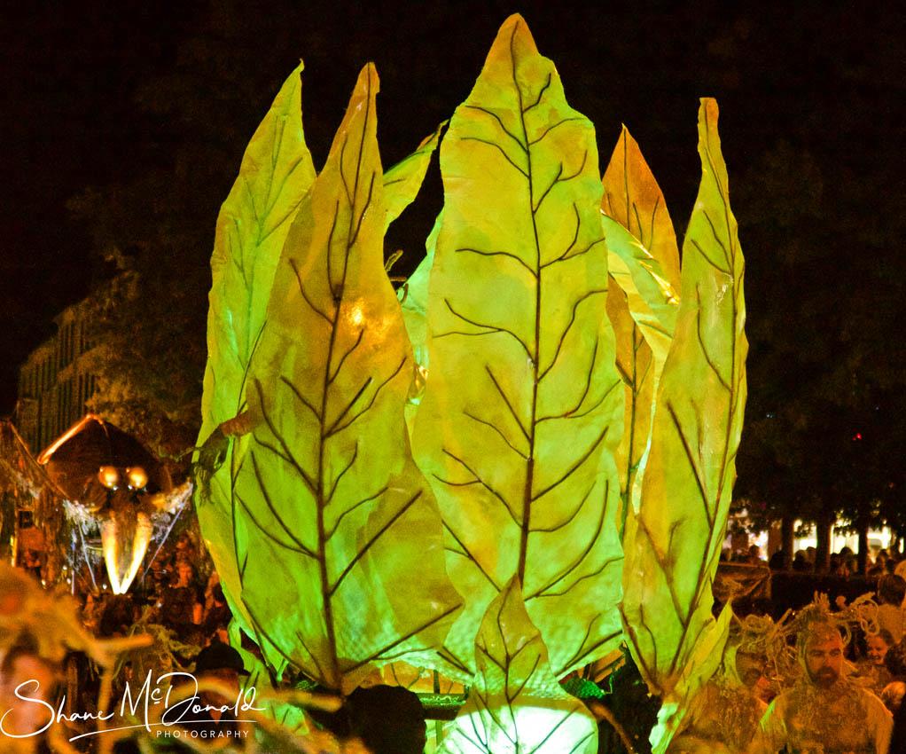 The Leaf Nest - Spraoi Parade 2018