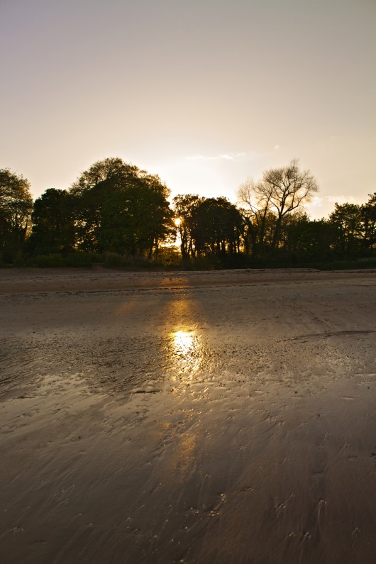 Woodstown Beach, Still Life / Sunset as Part of Project52 - Woodstown Beach, Co. Waterford, Ireland.